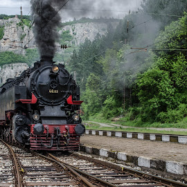 Grandma Bear by Georgi Tsachev - Transportation Trains ( water, old, engine, vintage, railroad, engineer, travel, smoke, historic, color, locomotive, coal, train, black, steam )