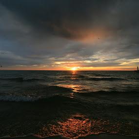 Lake Michigan Sunrise by Nancy Tonkin - Landscapes Sunsets & Sunrises ( lake michigan, waterscape, lighthouse, lake, sunrise )