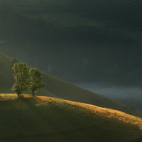Sun is up by Flaviu Negru - Landscapes Mountains & Hills (  )