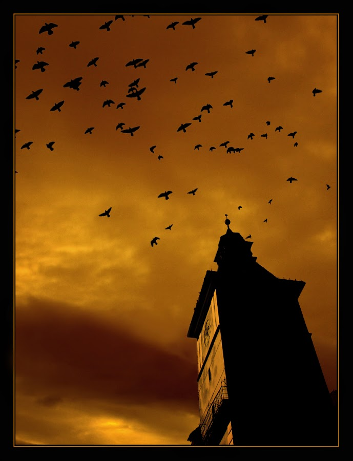 by Veronica Gafton - Digital Art Places ( tower, sky, birds )