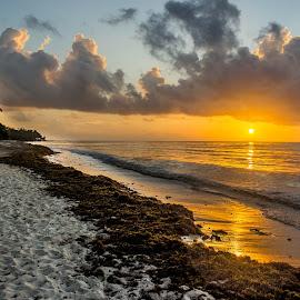 Paradise Emulation by Anatoliy Kosterev - Landscapes Sunsets & Sunrises ( surf, sand, sunrise, beach, sea )