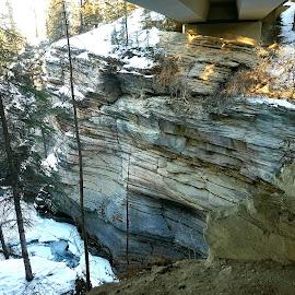 Athabasca Falls by Natasha Lena - Nature Up Close Rock & Stone ( winter, trees, stone, rock, sunlight )