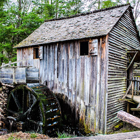 Cades Cove Mill  by Angela Taylor - Buildings & Architecture Architectural Detail ( mill, mountains, waterscape, cades cove, historic )