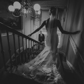 stairs by Adrian O'Neill - Wedding Bride & Groom ( love, stairs, bride, mono, groom )