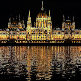 House of Parliament - Budapest/Hungary by Cristian Gheorghe - Buildings & Architecture Public & Historical ( parliament, budapest )