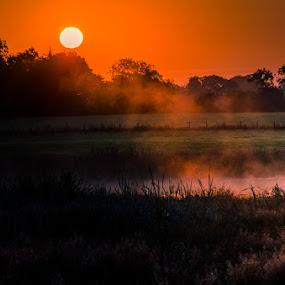 Misty Sunrise by Alistair Forrest - Landscapes Sunsets & Sunrises ( sunrise, pool, fields, fife, mist, scotland )