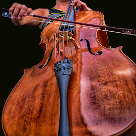 Cello by Marco Bertamé - Artistic Objects Musical Instruments ( music, wood, string, brown, cello, curves, black )