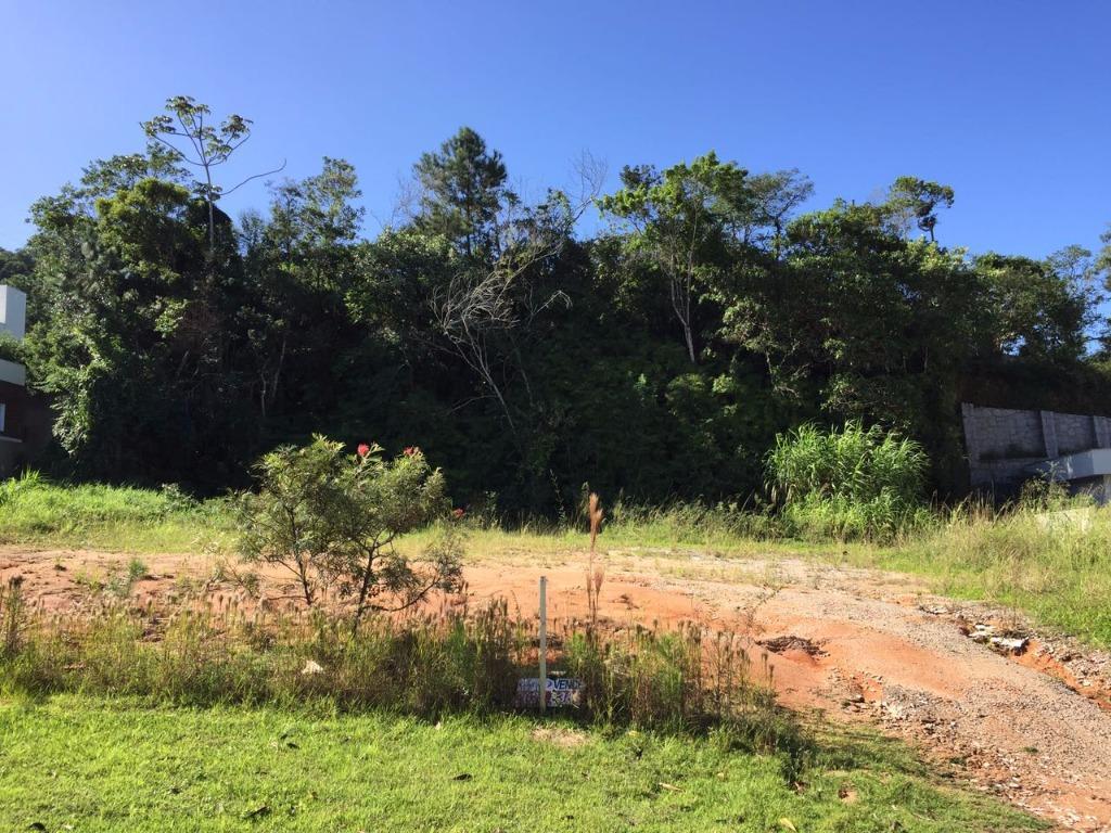 Terreno, Itacorubi, Florianópolis (TE0267) - Foto 15