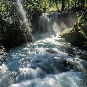 River Janja by Zoran Mrđanov - Landscapes Waterscapes (  )
