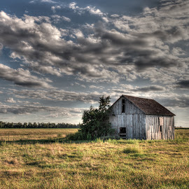 Evening Barn by Kerri Garrison - Buildings & Architecture Decaying & Abandoned ( clouds, farm, barn, sunset, abandoned )