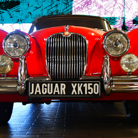 1960 jag by Jeanne Knoch - Transportation Automobiles