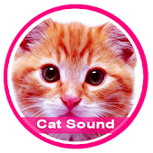 Free Download Votes of Cats APK for Samsung