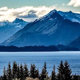 Kachemak Bay  by Patricia Phillips - Landscapes Travel ( alaska homer kachemak bay )