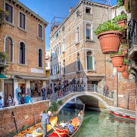 Venice by Cristian Peša - City,  Street & Park  Street Scenes ( historic districts, gondola, venice canal, venice, historic )