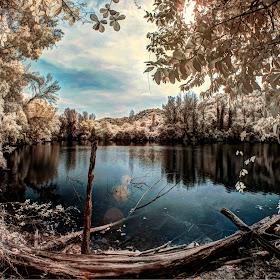 lake1tune.jpg