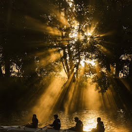 Rowers in the mist by Phil  Cross - Sports & Fitness Watersports ( water, rowing, trees, sunrise, boat, rays, river, mist )