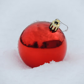 RED CHRISTMAS BULB IN THE SNOW by Laura Cummings - Public Holidays Christmas ( red christmas bulb in the snow,  )
