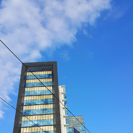 Offie building by Vali Tina - Buildings & Architecture Office Buildings & Hotels ( office building dublin ireland google modern tall sky blue business )