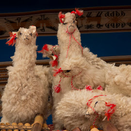 Stuffed Lamas by Janet Marsh - Artistic Objects Toys ( peru, lamas, toys,  )