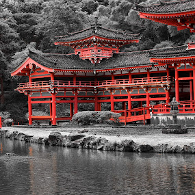 Byodo-In Temple by Cal Brown - Digital Art Places ( temple, digital art, japanese, digital photography, travel photography, hawaii, oahu,  )