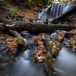 Meh by Carl Chalupa - Landscapes Waterscapes