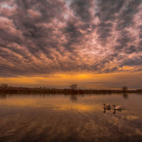 Columbia River clouds and ducks by Kathy Dee - Landscapes Cloud Formations ( clouds, water, reflection, columbia, ducks, pacific, reflections, northwest, travel, landscape, historic, tri-cities, trees, richland, river, , relax, tranquil, relaxing, tranquility )