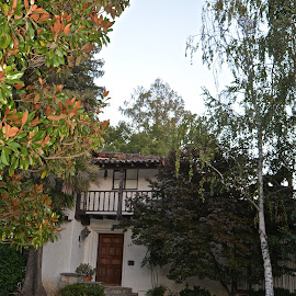 Monterey Colonial Home by Victoria Eversole - Buildings & Architecture Homes ( california, gardens, spanish architecture )