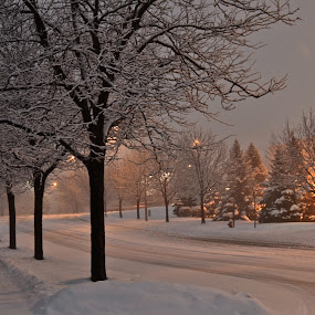 Silent Night by Diana Margan - City,  Street & Park  Street Scenes ( pwcfoulweather-dq, winter, snow, blizzard )