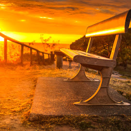 Sunrise by Dom Del - Artistic Objects Furniture ( bench, park, park bench, sunrise )