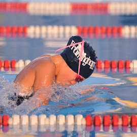 Breaststroke at Sunset by Rob Dupcak - Sports & Fitness Swimming ( water, breaststroke, lane lines, sunset, framingham, swimming )