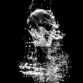 Water on bulb by Soyam Chhatrapati - Abstract Water Drops & Splashes ( water, splash, bulb, high speed, splash water photography )