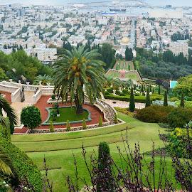 Bahá'í gardens by Mirko Ilić - City,  Street & Park  City Parks ( harbor, nature, green, gardens, haifa, bahai, israel )