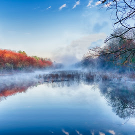Mendon, Morning Fog by Alan Roseman - Landscapes Waterscapes ( stream., foggy, new england, brook, fog, ma, mendon, morning )
