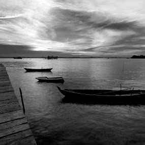 Sunset in monochrome by Fariz Mohammad - Landscapes Sunsets & Sunrises
