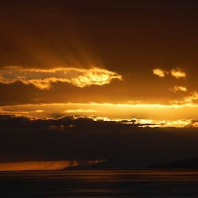 sepia power of light by Emilie Robert - Landscapes Sunsets & Sunrises ( divine, sepia, reflection, twilight, romantic, sea, sun, rays, presence, sunset, zen, power, light )