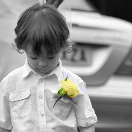 Candid child by Damien Brearley - Wedding Other ( young boy, wedding, pageboy, children candids, candid )