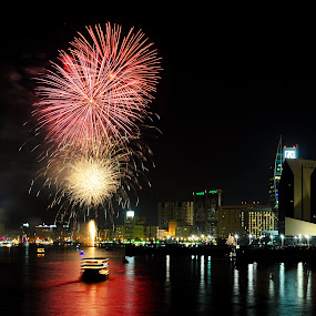 Creek Park Celebrating Dubai Shopping Festival  2013 by Jbern Eugenio - Public Holidays Other ( pwcfireworks, fireworks )