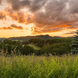 by Tony Hicks - Landscapes Prairies, Meadows & Fields