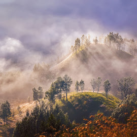The other side of Bromo by Agus Sudharnoko - Landscapes Mountains & Hills