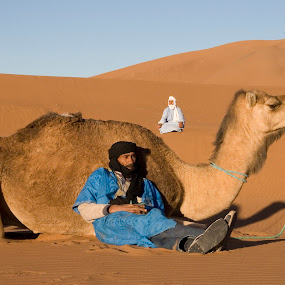 Relaxing camel with Bedoin men by Gale Perry - Animals Other ( leaning on camel, resting, camel, dune, sahara desert, morocco, 2 bedoin men,  )