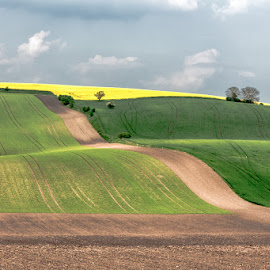 Spring landscape at Kyjov by Vladimir Vocelka - Landscapes Prairies, Meadows & Fields ( field, south moravia, czech republic, landscape, spring )