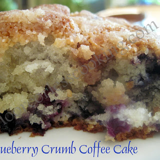 Blueberry Crumb Coffee Cake