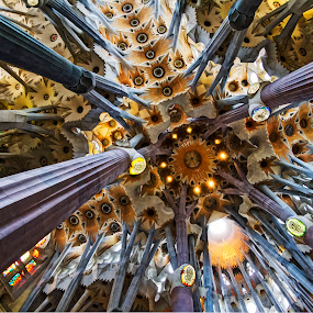 Sagrada Familia by Kah Wai Lin - Buildings & Architecture Places of Worship ( church, sagrada, familia, cathedral, barcelona, spain )