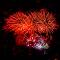 8376 jpg Firework Sept-18-1.jpg