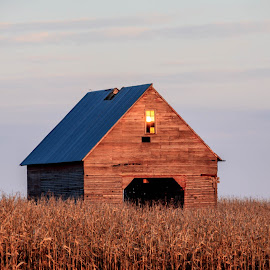 Weathered by Diane Ebert - Buildings & Architecture Decaying & Abandoned ( #oldbarns, #goldenhour )