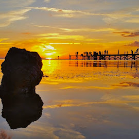 [ Apollo Glass }  by Jeffrey Lee - Landscapes Sunsets & Sunrises ( orange, blue, sunsets, pink, yellow, mirror type reflections with a sunset, apollo beach sunsets, saint petersburg sunsets,  )