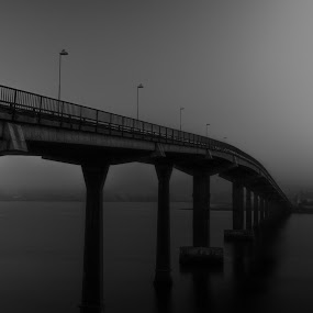 The Bridge by Thomas Ebeltoft - Black & White Buildings & Architecture ( canon, water, black and white, bridge, city )
