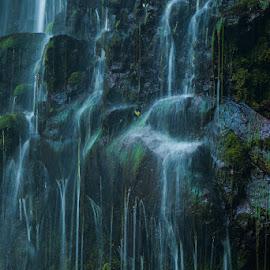 by Sunarto Djuardi - Nature Up Close Water