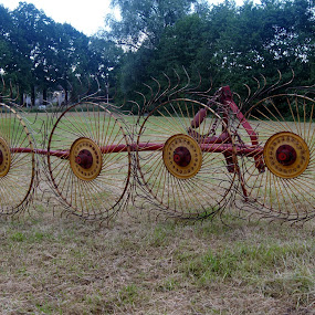 Hay Rake Tires by Anita Berghoef - Artistic Objects Industrial Objects ( farm, circles, wheel, farmer, wheels, farmland, circle, hay rake tires,  )