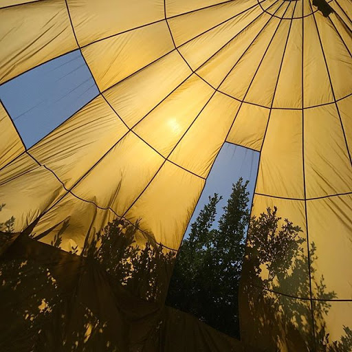 light in round brittle bubbles was climbing u...